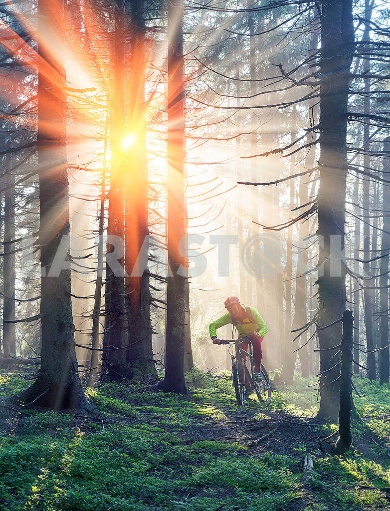 Dawn rays mountain cycling — Image 69855