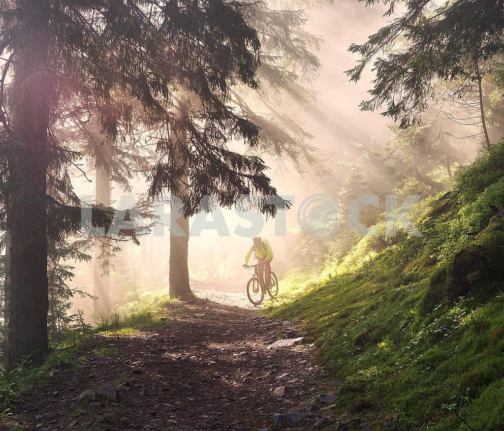Dawn rays mountain cycling — Image 69960