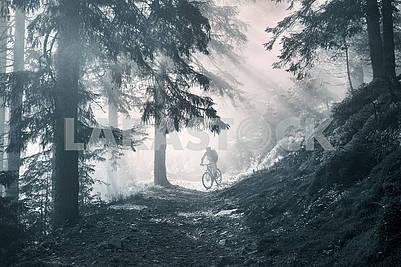 Dawn rays mountain cycling