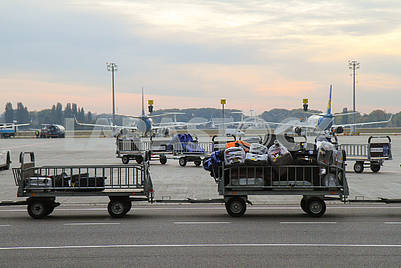 Тележки с багажем и самолеты