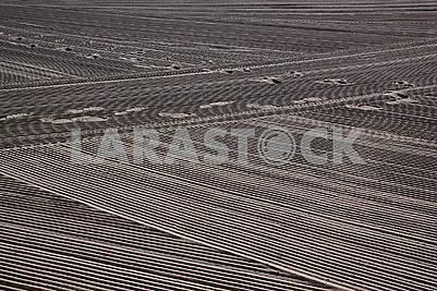 Сліди людини на очищеному трактором піску середземноморського пляжу