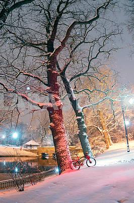 Mountain bike MTB in snowfall