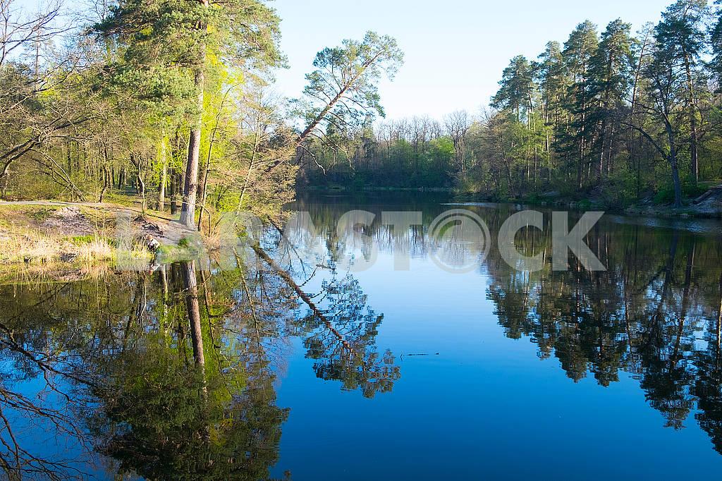 Озеров Пуще-Водице — Изображение 70148