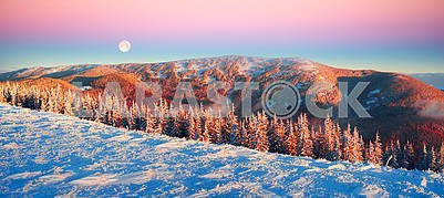 Frosty sunrise in the Carpathian mountains