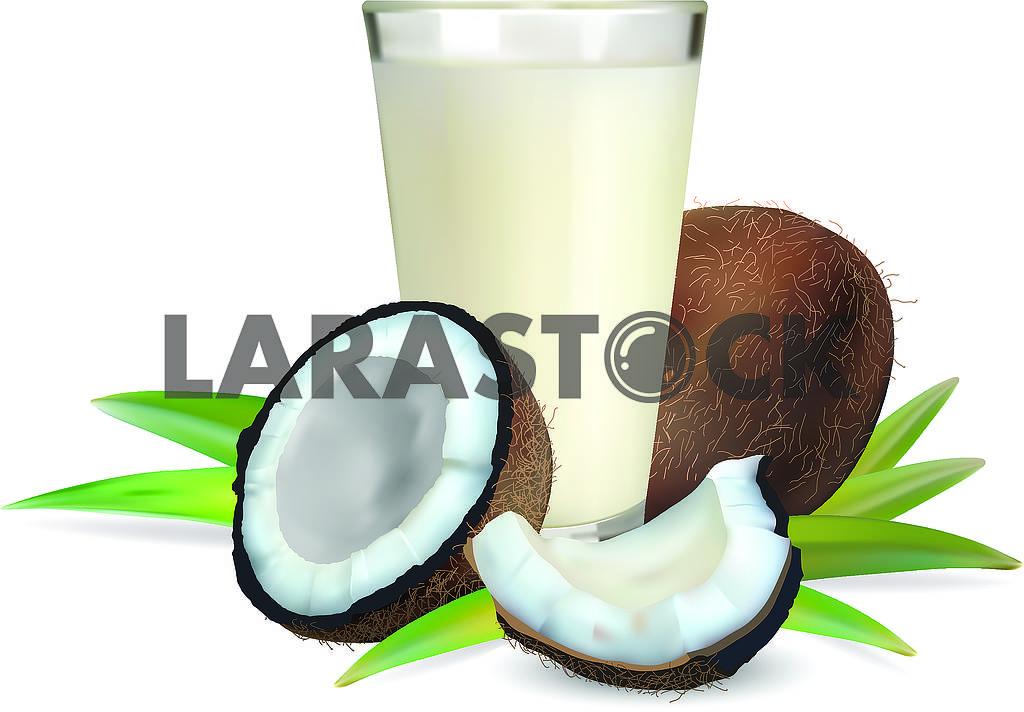 Кокос и кокосовое молоко — Изображение 70319