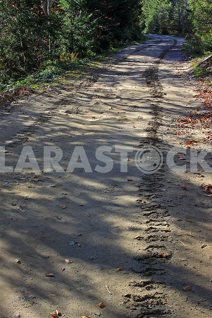 Tracks of a crawler tractor on a dirt road — Image 70467