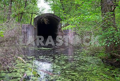 Тоннель на Жуковом острове