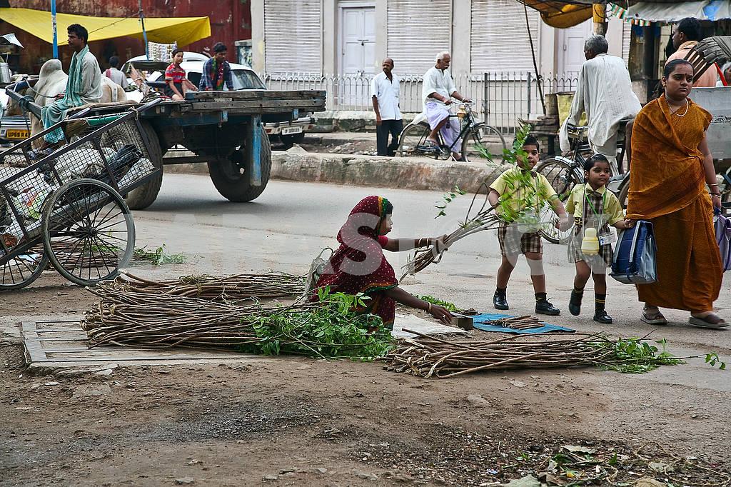 Девушка на улице заготавливает палочки для чистки зубов. — Изображение 71530