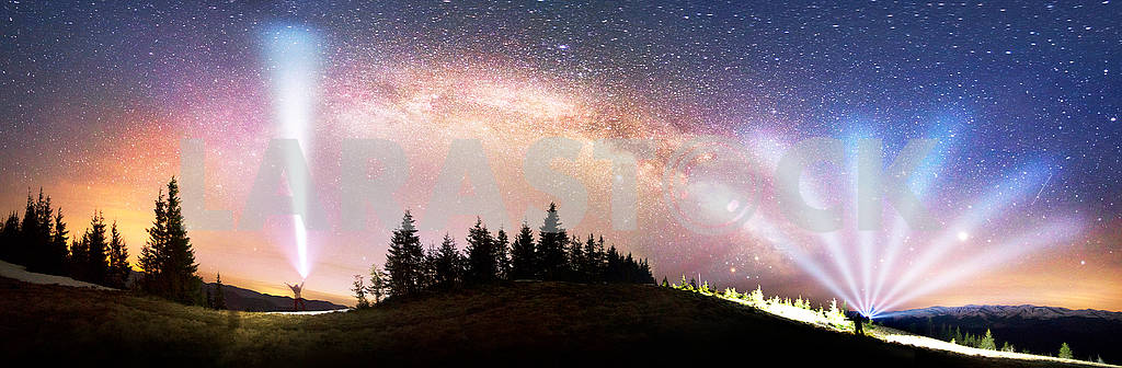 Milky Way over the Fir-trees — Image 71657