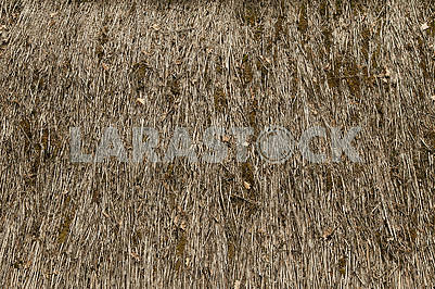 Abstract texture of the old straw roof.