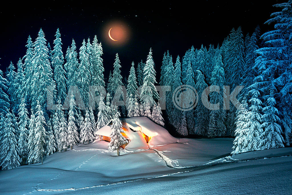 Christmas House in the Carpathians — Image 71767