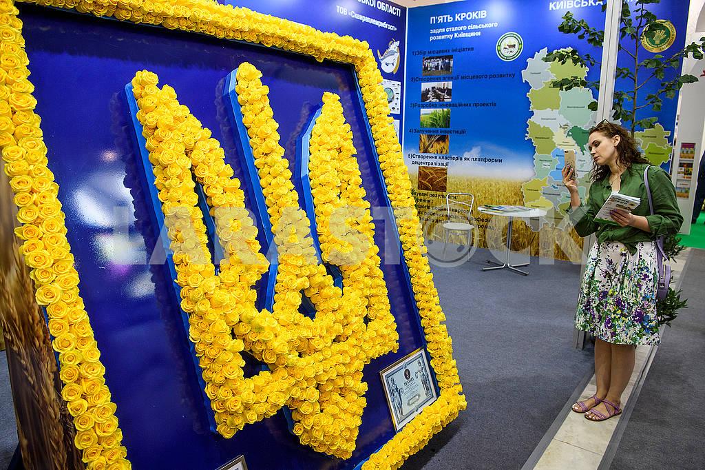Девушка и герб Украины — Изображение 71780