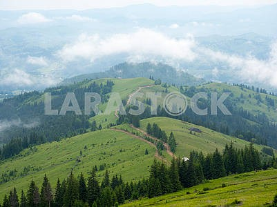 Smereki in the Carpathians