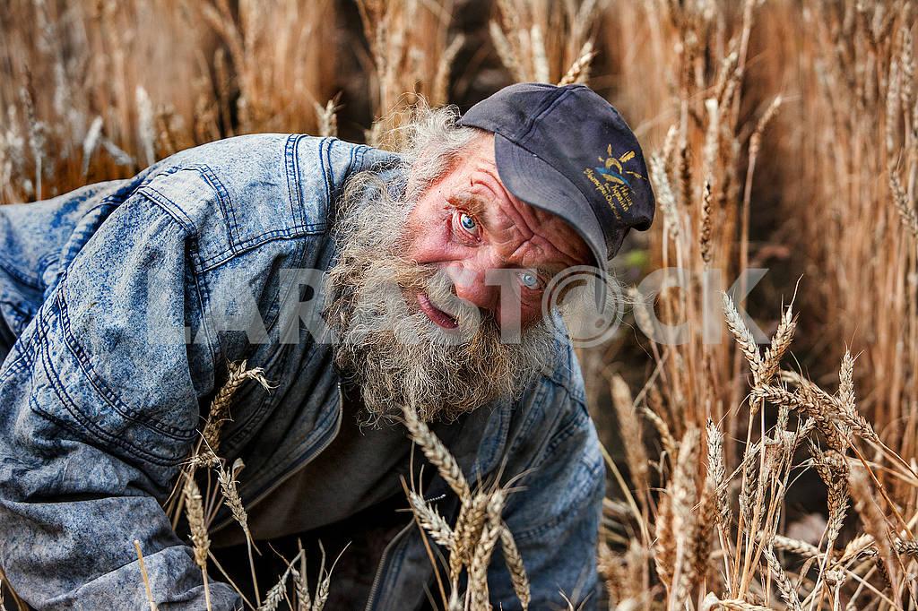 Портрет украинского бродяги — Изображение 71942