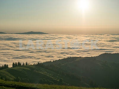 Облака и хвойный лес в Карпатах