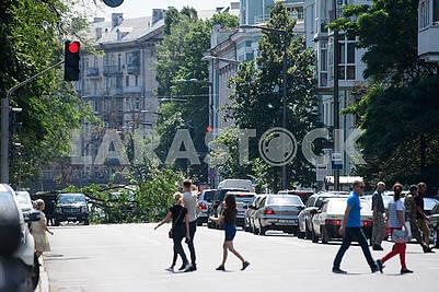 Pedestrians near the fallen tree