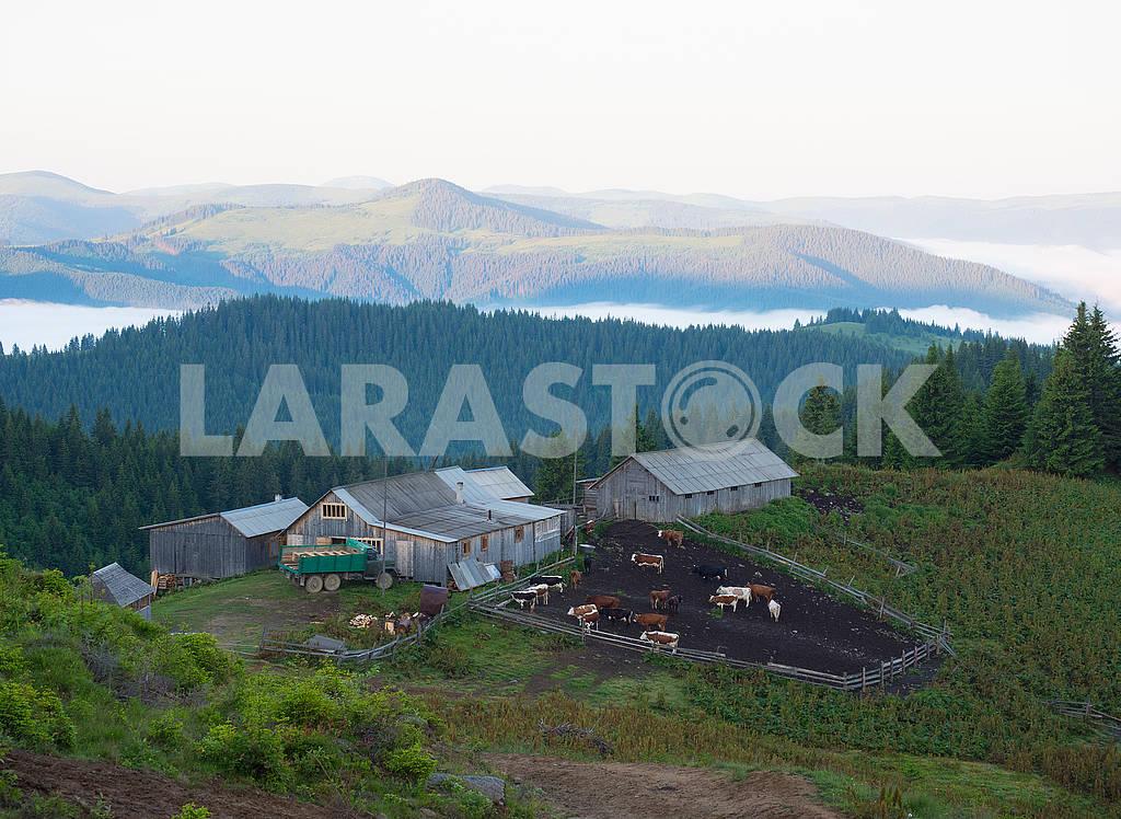 Ферма в горах — Изображение 72293