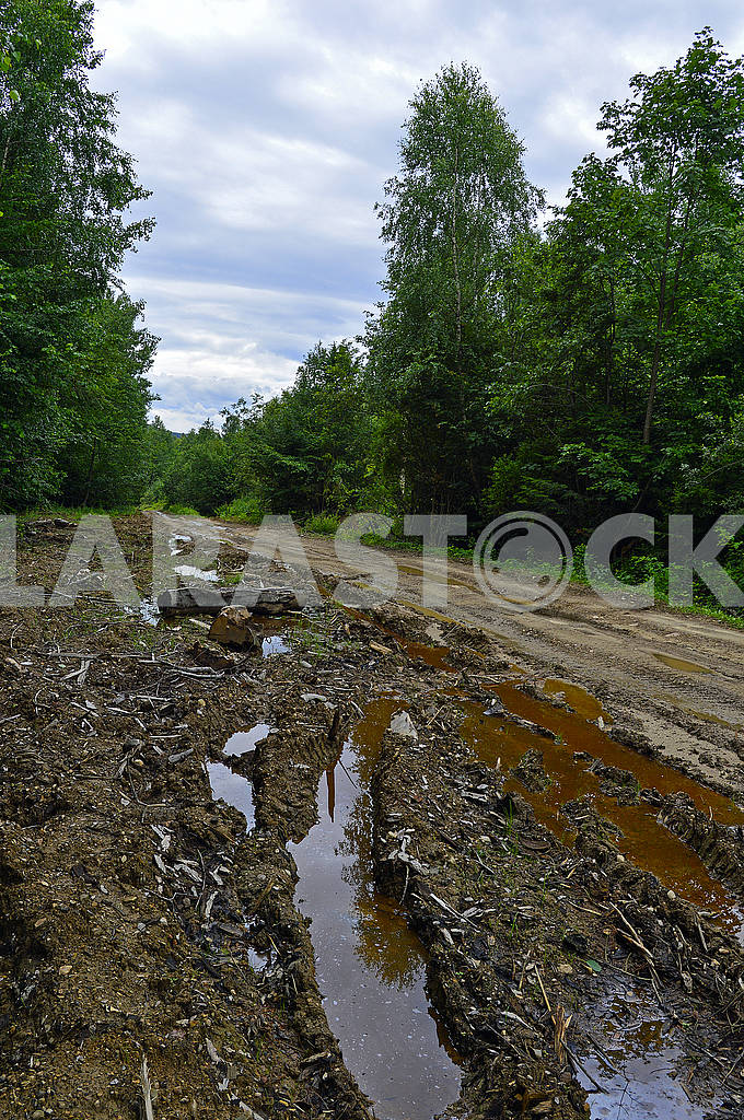 Mountain bumpy forest dirty road — Image 72760