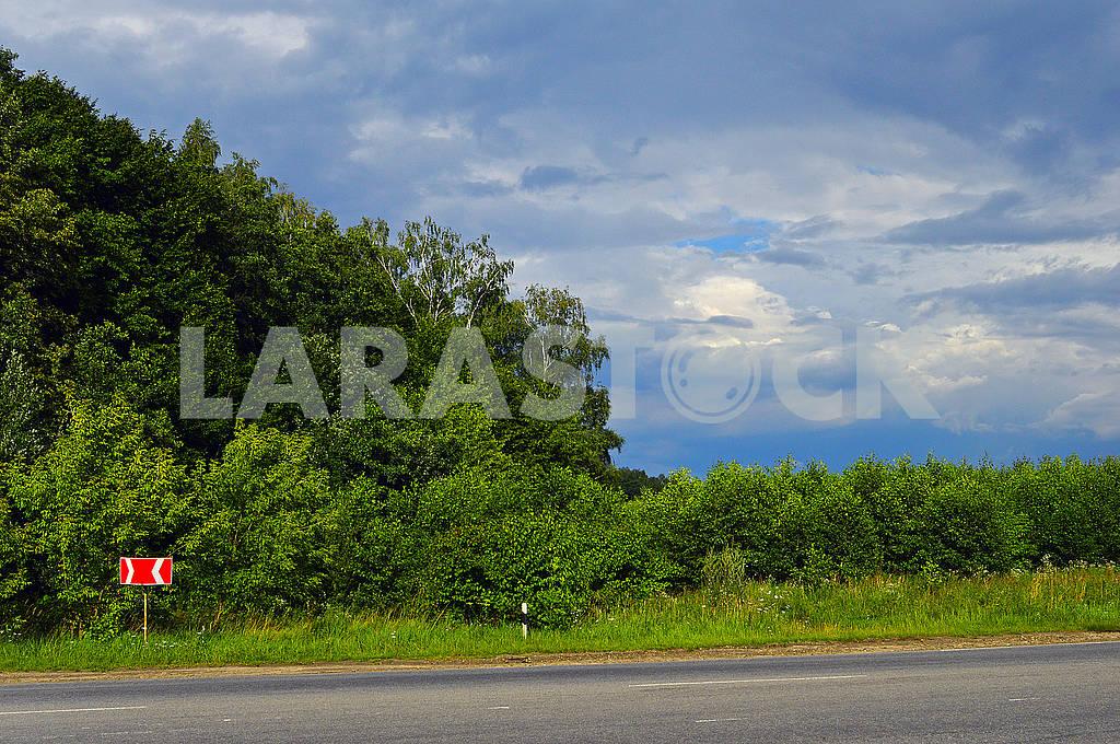 Дорога вздовж лісу — Изображение 73213