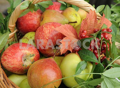Basket with apples and bouquet