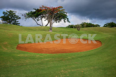 Golf Course in Kenya