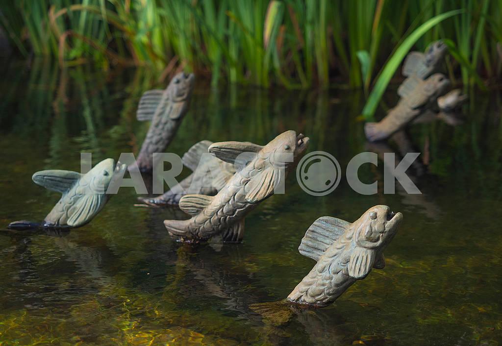 Скульптуры рыб в бассйене — Изображение 73877