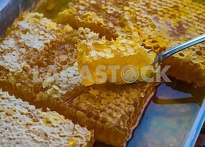 Кусочек меда и соты