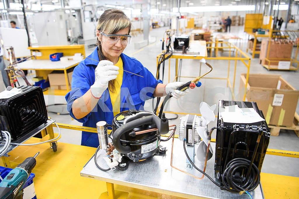 Работница в цеху завода Грин кул — Изображение 74213