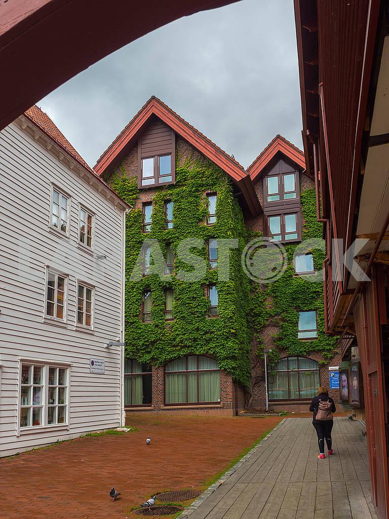 Здание с вьющимися листьями — Изображение 74261