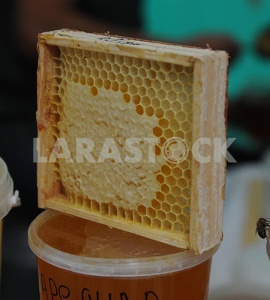 Медовые соты — Изображение 74611