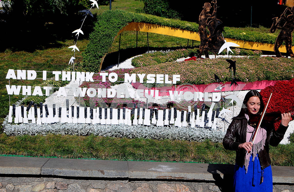Девушка играет на скрипке — Изображение 74965