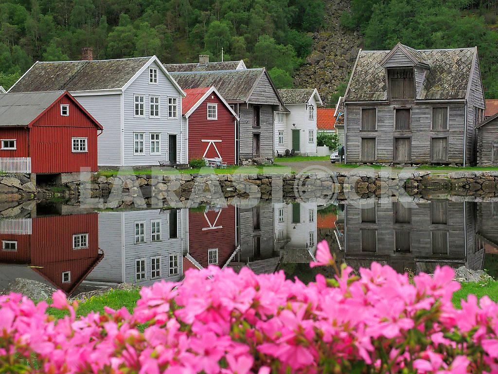 Цветы и деревянные дома в Лердале — Изображение 75070