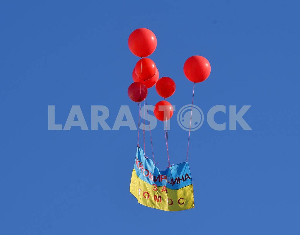 Воздушные шары с флагом Украины — Изображение 75148