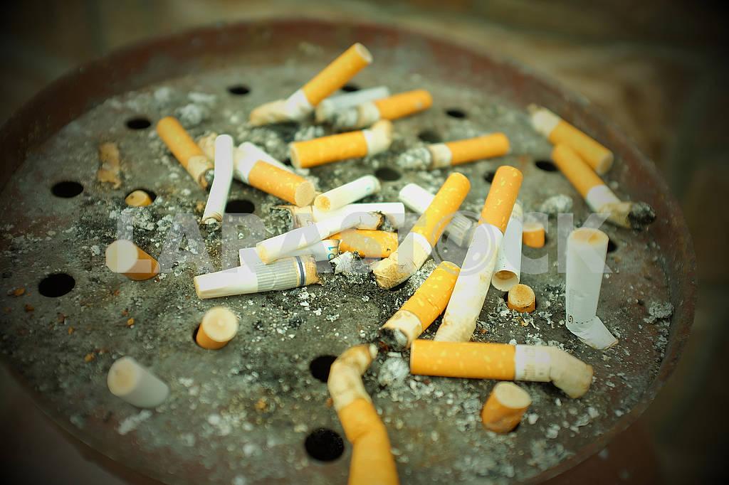 Курение вред для здоровья — Изображение 75932