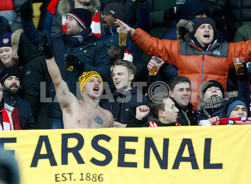 Arsenal fans — Image 76793