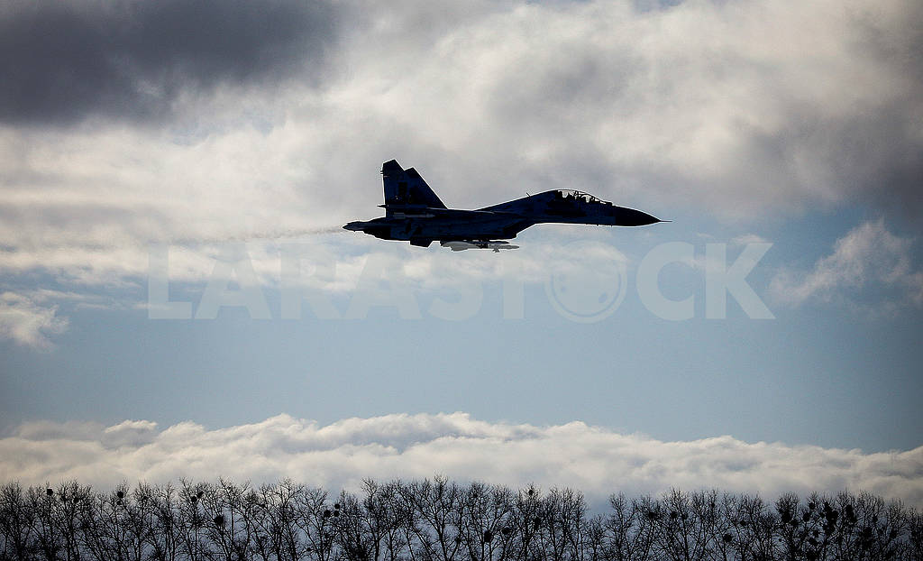 Ukrainian Air Force aircraft in the sky — Image 76882