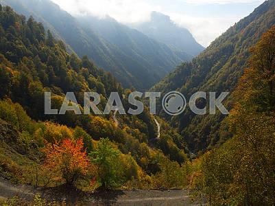 Осенний пейзаж в Кахетии