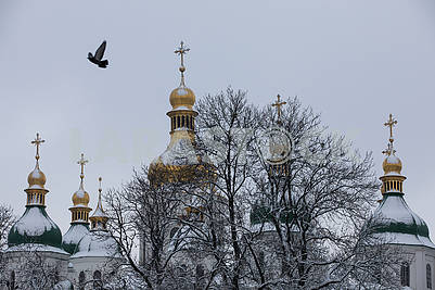 Unifying Cathedral of Ukrainian Orthodox Churches