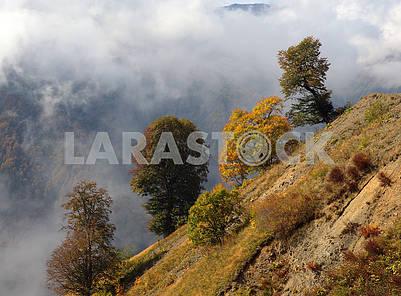 Autumn landscape in Kakheti