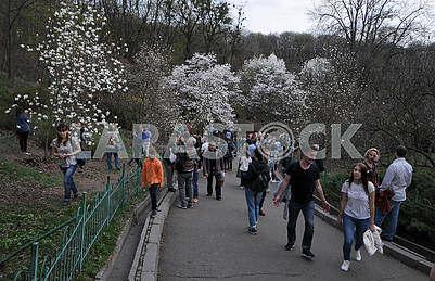 People walk in the botsada