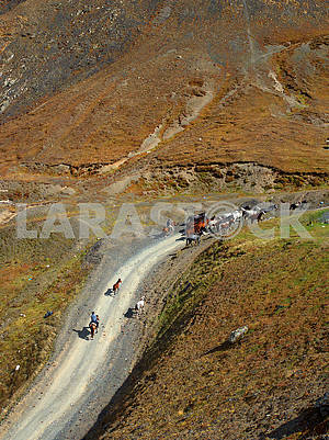 Riders on a mountain road