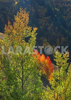 Autumn landscape in the Caucasus