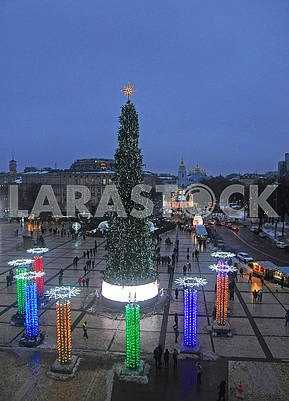 Christmas tree on Sofia square in Kiev