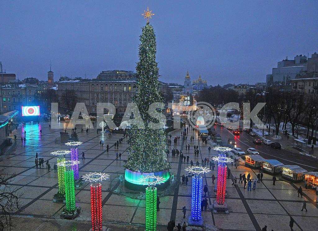 Christmas tree on Sofia square in Kiev — Image 77663