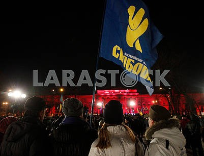 """Flag of VO """"Svoboda"""""""