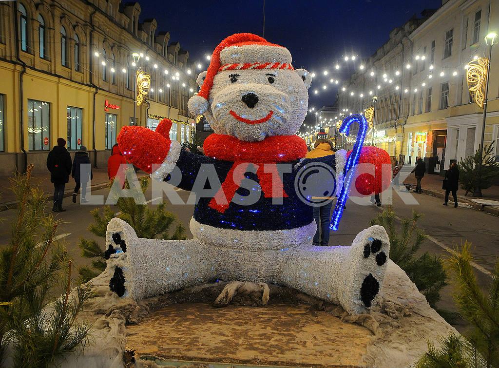 Polar bear — Image 77807