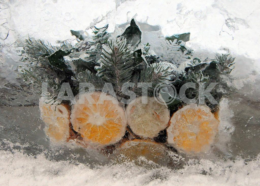 Frozen Lemons and Oranges — Image 77877