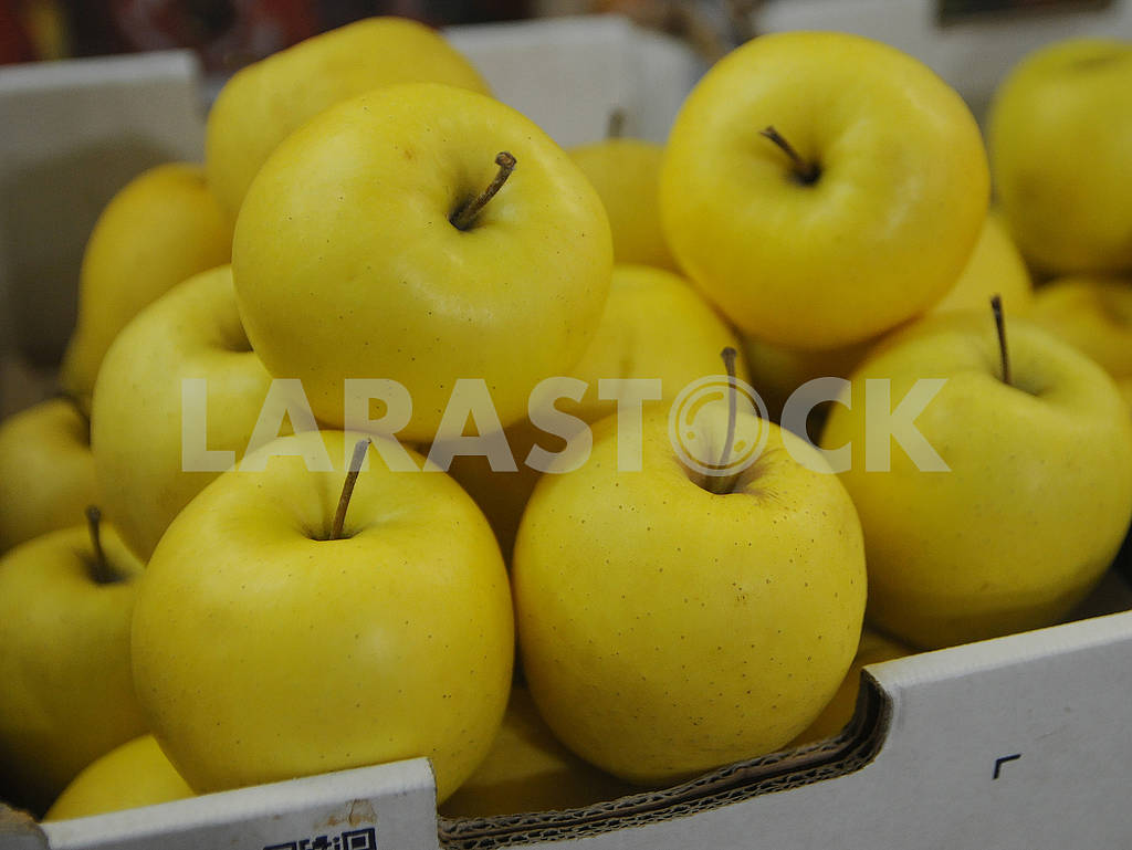 Apples — Image 78646