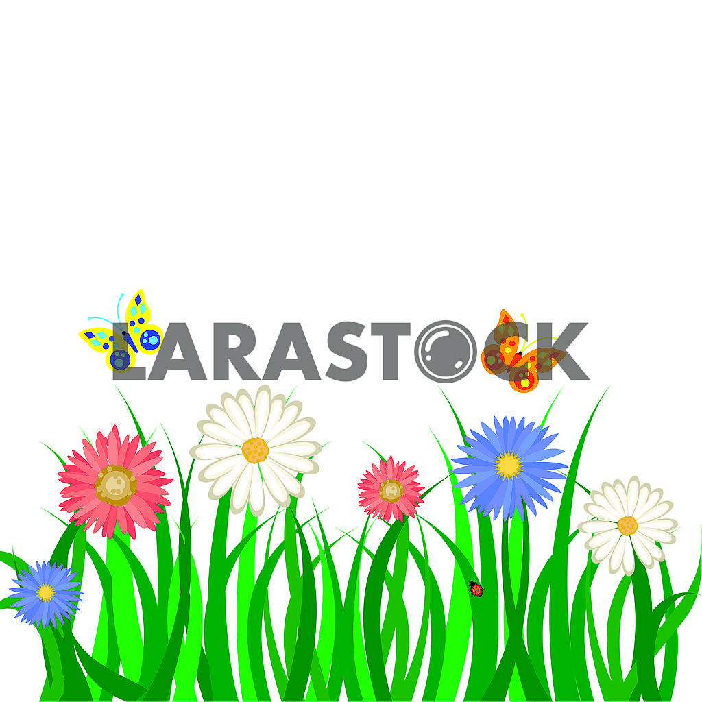 Spring background, green grass and flowers — Image 78831