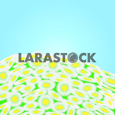 Зеленое поле с цветами ромашки
